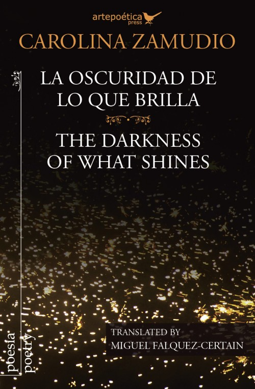 La oscuridad de lo que brilla / The Darkness Of What Shines